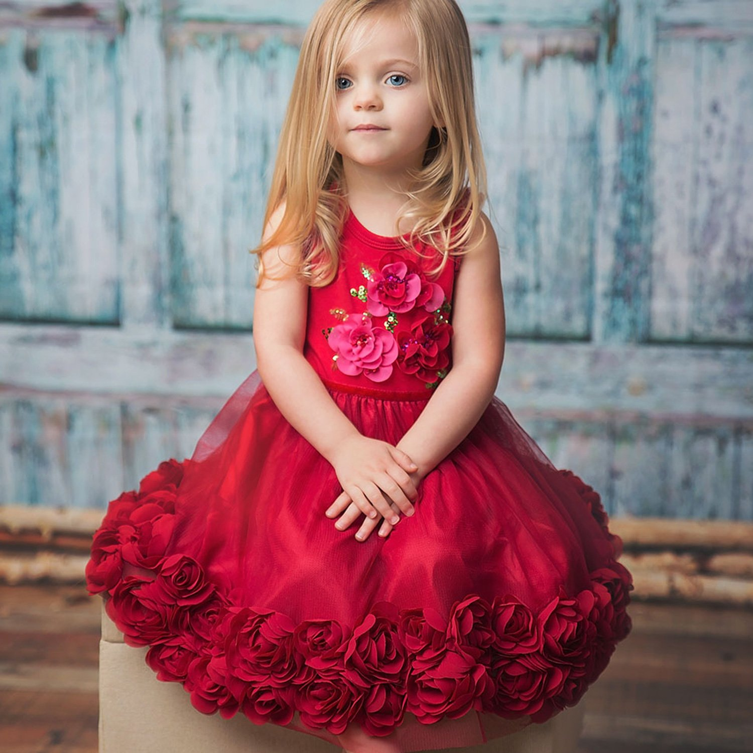 Haute Baby Ruby Sparkle Toddler Holiday Dress